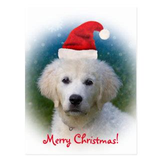 ¡Felices Navidad! perrito lindo del golden Tarjetas Postales