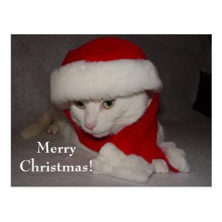 ¡Felices Navidad! Tarjeta Postal