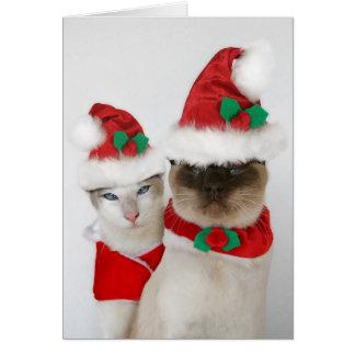 ¡Felices Navidad Tarjetas