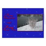 Felices Navidad y Feliz Año Nuevo Felicitacion