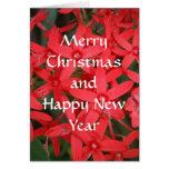 Felices Navidad y tarjeta de la Feliz Año Nuevo