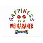 Felicidad de Weimaraner Postales