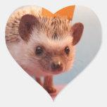 Felicidad del erizo pegatina en forma de corazón