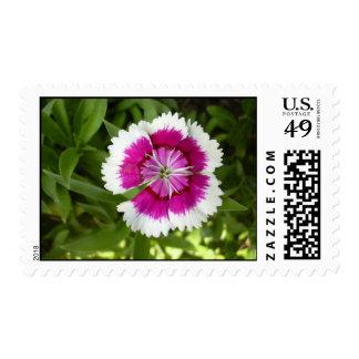 Felicidad Postage Stamps