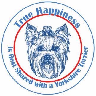 Felicidad verdadera con un Yorkshire Terrier Esculturas Fotográficas