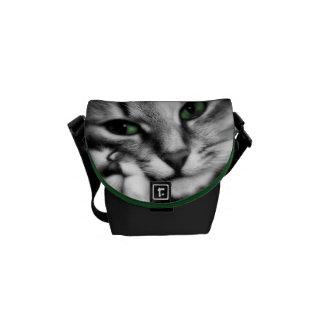 Feline Affection Courier Bag
