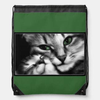 Feline Affection Cinch Bags