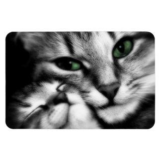 Feline Affection Flexible Magnet