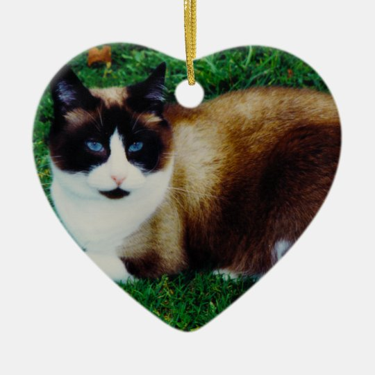 Feline Beauty Ceramic Ornament