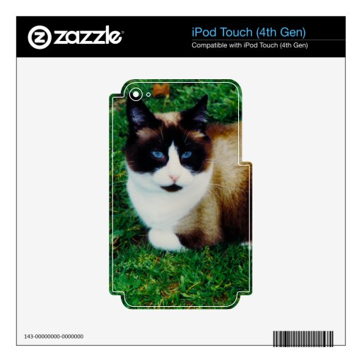 Feline Beauty iPod Touch 4G Decal