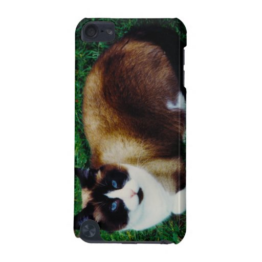 Feline Beauty iPod Touch (5th Generation) Cover