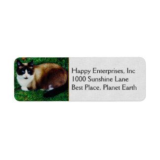 Feline Beauty Return Address Label