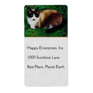 Feline Beauty Personalized Shipping Labels