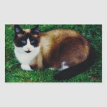 Feline Beauty Rectangular Stickers