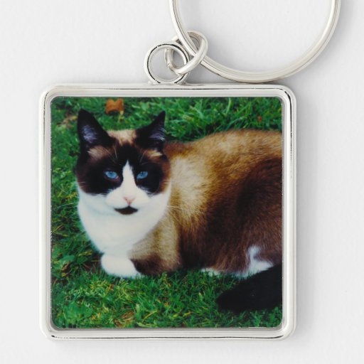 Feline Beauty Silver-Colored Square Keychain