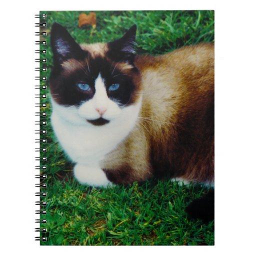 Feline Beauty Spiral Note Book
