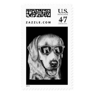 Feline Fascination Dog Art Stamps