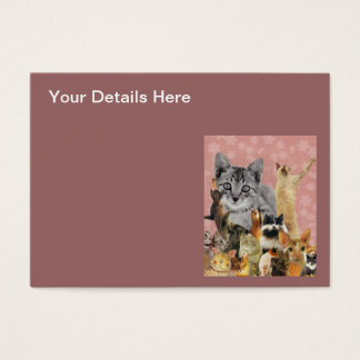 Feline Follies Business Card