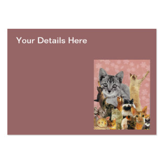 Feline Follies Large Business Cards (Pack Of 100)