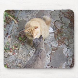 Feline Greeting Mouse Pad