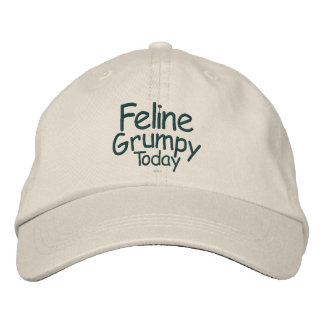 Feline Grumpy Today Embroidered Hat