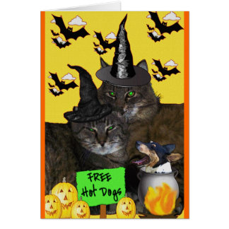 Feline Halloween Party Card