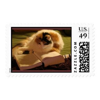 Feline Lincoln Stamp