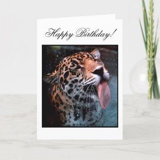 Feline Love Birthday Card card