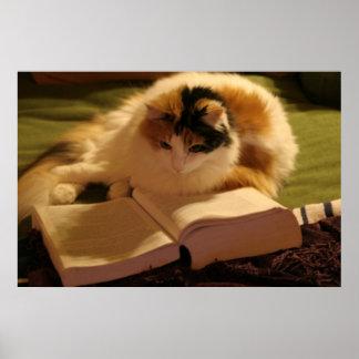 Feline Scholar Poster