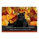 Feline Superstition Greeting Card