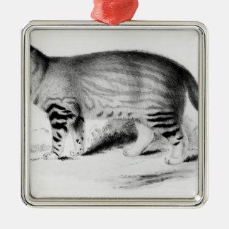 Felis Pajeros, plate 9 Metal Ornament
