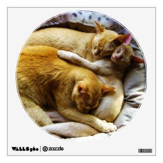 Felis Silvestris Catus de 3 el dormir gatos de cas Vinilo