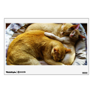 Felis Silvestris Catus de 3 el dormir gatos de cas Vinilo Adhesivo