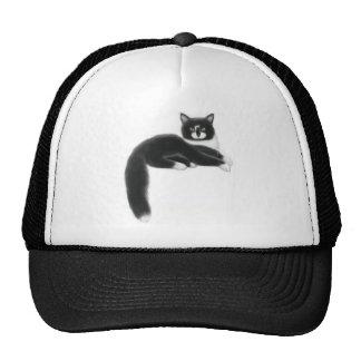 Felix el gorra negro y blanco del gato