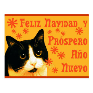 Felix Navidad Postcard