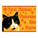 Felix Navidad Tarjeta Postal