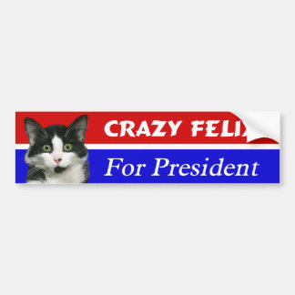 Felix the Cat for President Bumper Sticker Car Bumper Sticker