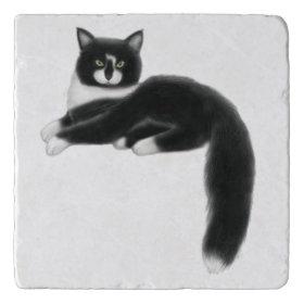 Felix the Tuxedo Cat Stone Trivet Trivets