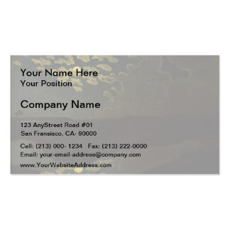 Felix Vallotton - Moonlight Double-Sided Standard Business Cards (Pack Of 100)