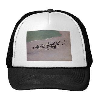 Felix Vallotton-Washerwomen at Etretat Trucker Hat