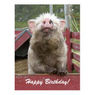 Feliz cumpleaños 42a de saludo del cerdo lindo postal