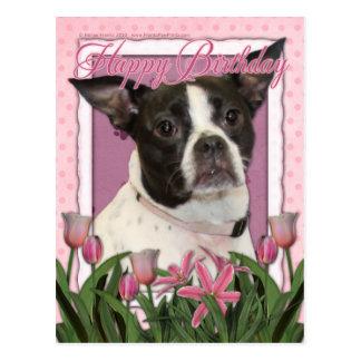 Feliz cumpleaños - Boston y rata Terrier - Jazy Postal