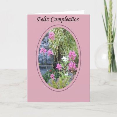 Check out Feliz Cumplea�os