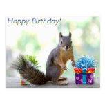 ¡Feliz cumpleaños de la ardilla!