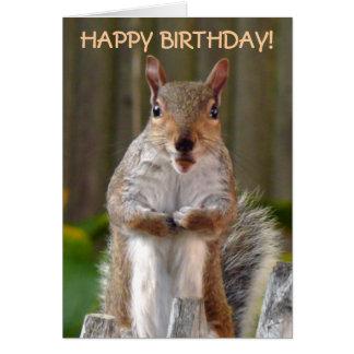 Feliz cumpleaños de la ardilla linda tarjeta de felicitación