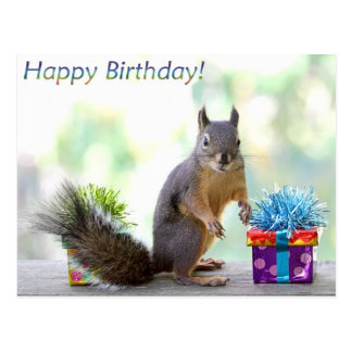 ¡Feliz cumpleaños de la ardilla! Tarjeta Postal