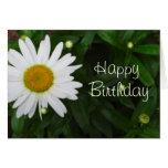 Feliz cumpleaños de la margarita felicitacion
