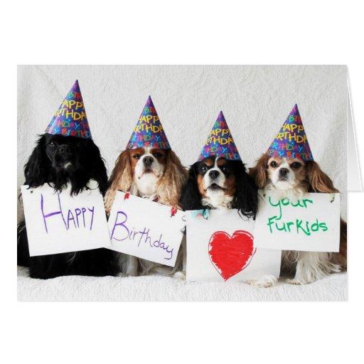 Feliz cumpleaños de los Cavaliers del perro del dí Tarjetón