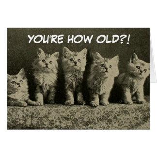 Feliz cumpleaños de los gatitos retros lindos del tarjeta de felicitación