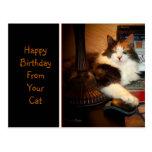 Feliz cumpleaños de su postal del saludo del gato